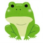 カエル(蛙)が夜中に一斉に鳴き出すのはなぜ?合唱と言われる理由